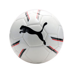 PELOTA PRO TRAINING 2 MS BA