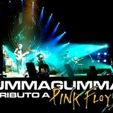 Ummagumma, Tributo A Pink Floyd