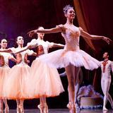 Ballet Nacional SODRE (Uruguay) Con Dirección De Julio Bocca