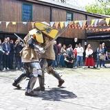 Feria Medieval VII