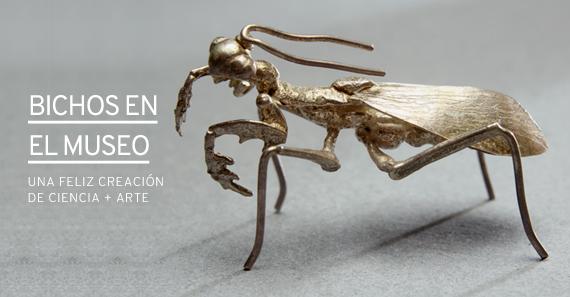 Bichos En El Museo