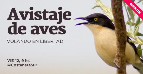 Avistaje De Aves En Libertad